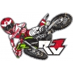 Thor Decals Ryan Villopoto RV1