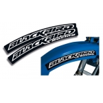 Blackbird Racing front side fender decal