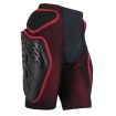 Alpinestars Bionic Freeride Protection Shorts 2007-2019