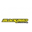 Blackbird Racing