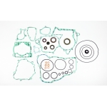 Athena Engine Gasket Set Complete incl. Oil Seals Beta RR 250/300 2T 14-15